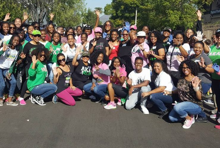 MLO Chapter Volunteers with Big Sunday on MLK National Day of Service